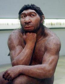 neandertal-et-sapiens-ancetre-commun
