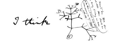 darwin_tree_wide