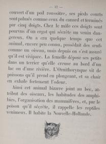 Le_livre_des_petits_enfants_[...]Doudet_Mme_bpt6k64257651 (1)
